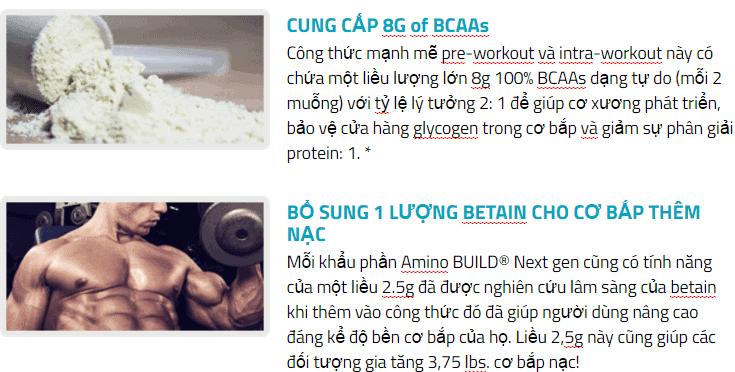 MuscleTech - Amino Build Next Gen (30 lần dùng) - 130 image