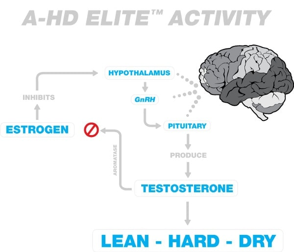BPI Sports - A-HD Elite (30 viên) - a hd activity