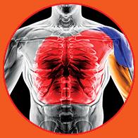 MuscleTech - VaporX5 Next Gen (30 lần dùng) - circle 2