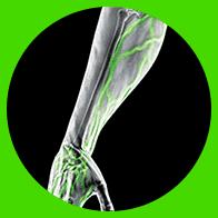 MuscleTech - VaporX5 Next Gen (30 lần dùng) - circle 5