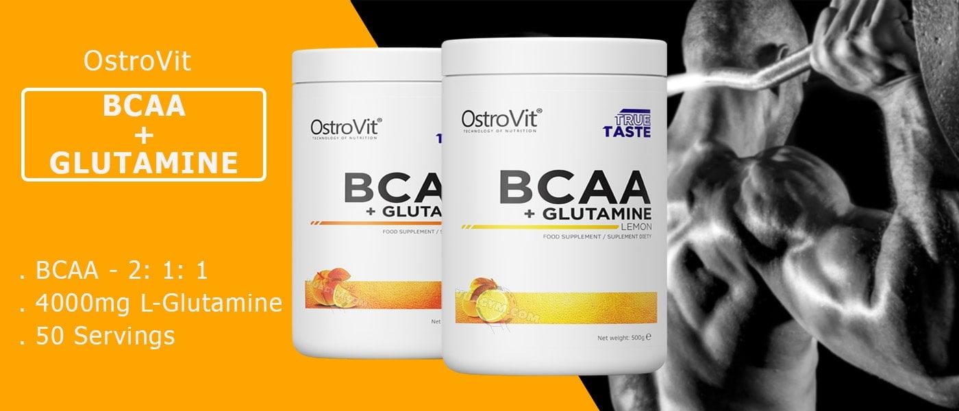 OstroVit - BCAA + Glutamine (500g) - eng pl ostrovit bcaa glutamine mota
