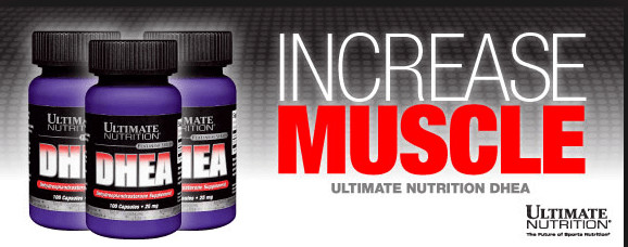 Ultimate Nutrition - DHEA 100mg (100 viên) - mo ta 2 1