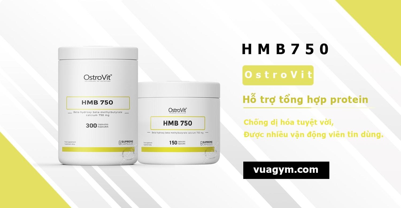 OstroVit - HMB 750 (300 viên) - ostrovit hmb 750 mo ta