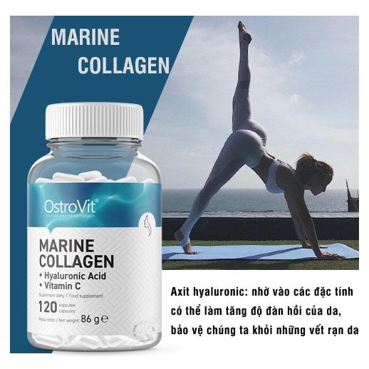 OstroVit - Marine Collagen + Hyaluronic Acid + Vitamin C (120 viên) - ostrovit marine collagen 120v mota